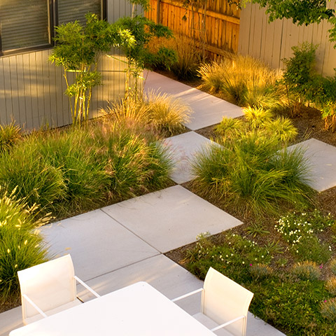 Posted In Landscape Rubber Mulch And Tagged Garden Design